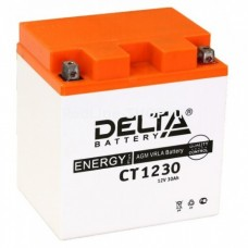 Аккумулятор DELTA СT 1230 (YIX30L) 12V 30Aч Обратный-+